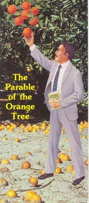Orange tree parable