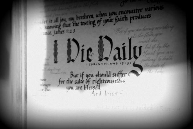 Die Daily